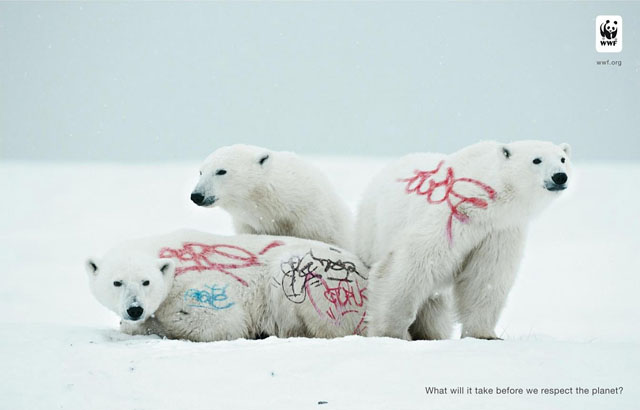 wwf-awareness-white-bear