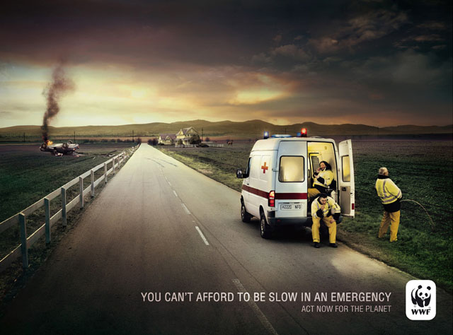 wwf-emergency-ambulance