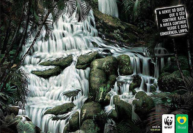 wwf-forestbrasil2